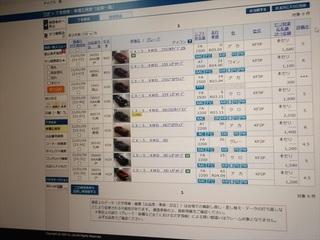 100_0014_R.JPG