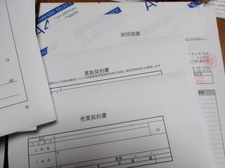 100_0023 (17)_R.JPG