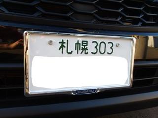 100_0027 (7)_R.JPG