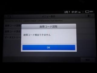 100_0033 (7)_R.JPG