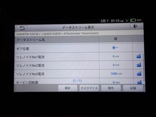 100_0046 (3)_R.JPG