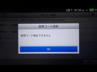 100_0053 (2)_R.JPG