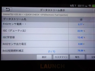 100_0081_R.JPG