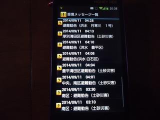 DSC06947.jpg